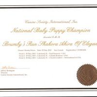 Akira's NTNL CH Certificate